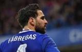 Фабрегас предположил, что матч против Аргентины со сборной на ЧМ-stars