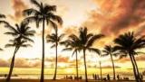 Вам дневник, потому что это, когда вы должны пойти на Гавайи