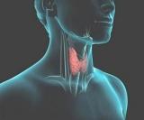 Дыхательные упражнения для здоровья щитовидной железы
